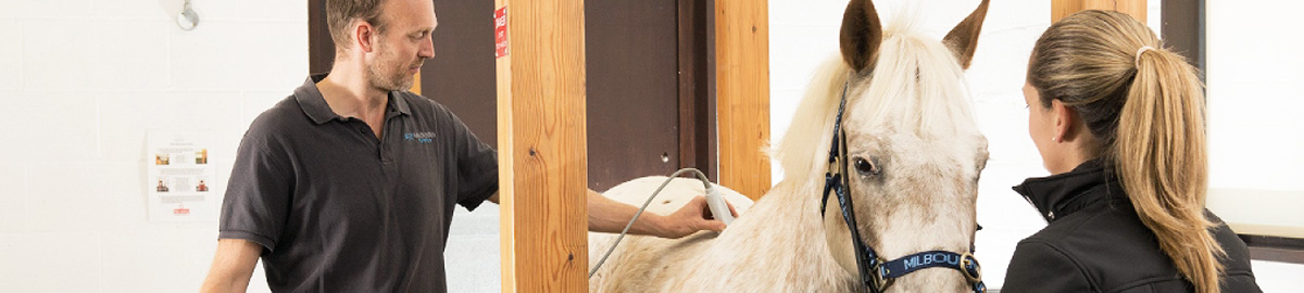 Seasonal Equine Worming News
